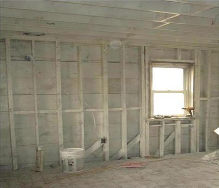 Daytona Beach Mold Cleanup