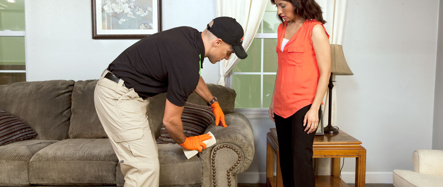 Daytona Beach, FL carpet upholstery cleaning